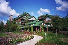 Wilderness Lodge by ilene Disney Parks, Walt Disney World, Yellowstone National Park, National Parks, Wilderness Resort, Pine Trees Forest, Tall Fireplace, Old Faithful, Hello Gorgeous