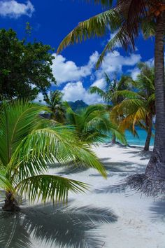 Tahiti -- sit back and take a deep breath...this is a magnificent place to be ... www.onestepvacations.com
