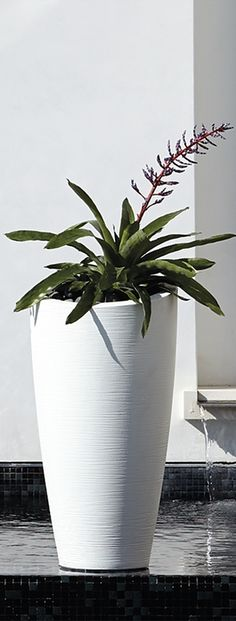 Our San Miren Planter's subtle rings swirl upward, giving a sense of organic texture. Tall Planters, Planter Pots, Modern Outdoor Living, Sustainable Farming, Flower Pots, Flowers, Window Boxes, Humble Abode, Backyard