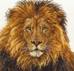 DMC Safari Animals Lion's Pride Counted Cross Stitch Kit for sale online Dmc Cross Stitch Kits, Cross Stitch Needles, Cross Stitch Supplies, Counted Cross Stitch Patterns, Cross Stitch Embroidery, Cross Stitching, Lion Pride, Safari Animals, Embroidery Patterns