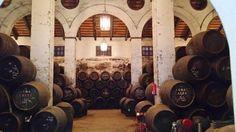 Manzanilla pasada Maruja está elaborada por Bodegas Piñero en Sanlúcar de Barrameda bajo el sistema de criaderas y soleras y con una edad de 15 años.