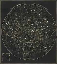 'Vintage Astronomical & Celestial Map Poster by BravuraMedia - astronomy Cosmos, Celestial Map, The Ancient Magus, Star Chart, Space And Astronomy, Astronomy Facts, Astronomy Pictures, Astronomy Quotes, Astronomy Tattoo