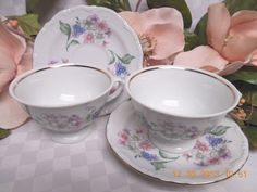 Walbrzych, Southington China Dinnerware Garland Cup and saucer