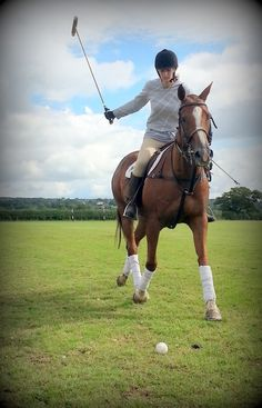 Going for a polo shot at JF Polo Academy in Chester