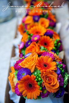 Schitterend, mooie heldere kleuren. We zouden het mooi vinden als op onze foto's de kleuren ook zo van het beeld afspatten!