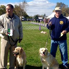 Brad and Hunter ,rod and Murphy obedience and rally