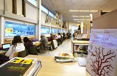 Biblioteca Llefià-Xavier Soto