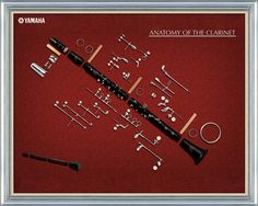 Anatomy of a Clarinet: Favorite poster ever