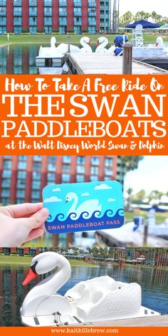 A Ride on the Swan Paddleboats at the Walt Disney World Swan & Dolphin Disney Resort Hotels, Disney World Hotels, Disney World Parks, Disney World Planning, Walt Disney World Vacations, Disney World Tips And Tricks, Disney Tips, Disney Fun, Disney Travel