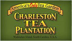 Charleston Tea Plantation - Vacation Ideas