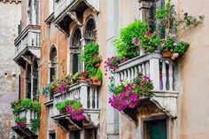 Balconies With Flowers Balconies With Flowers – Balconies With Flowers Flower Building , Arizona Winter Flowers , Po Balcony Flowers, Balcony Plants, Potted Plants, Box Photo, Arizona Winter, Photo Deco, Stock Image, Winter Flowers, Flower Boxes