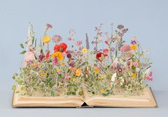 Portfolio Book-Cut Sculpture Wild Flowers (X), 2014 Su Blackwell Art Floral, Deco Floral, Dried Flowers, Paper Flowers, Book Flowers, Beaded Flowers, Book Art, Arte Fashion, Altered Books