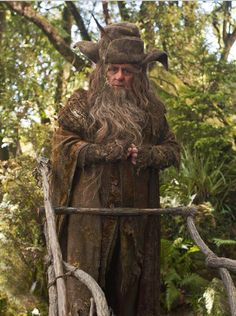 Sylvester McCoy (known for his role as the Seventh Doctor in Doctor Who) in The Hobbit as Radagast the Brown, Gandalf's cousin Hobbit 1, Tolkien Hobbit, Hobbit Films, The Hobbit Movies, Lotr, Hobbit Hole, Gandalf, Lord Of Rings, Radagast The Brown