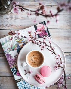 Sempre tem aquele amigo que topa tomar um café com você a qualquer hora! Coffee World, Coffee Is Life, I Love Coffee, Coffee Break, My Coffee, Coffee Drinks, Coffee Time, Tea Time, Cozy Coffee Shop