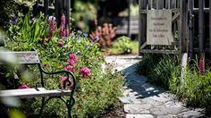 Eggerwirt Garten Outdoor Furniture, Outdoor Decor, Sidewalk, Home Decor, Running Away, Recovery, Nature, Lawn And Garden, Decoration Home