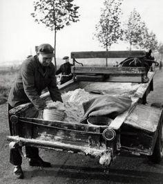 J. Meuris | Handelaar. De zandverkoper of zandman die een emmer met fijn zand vult, zijn kar wordt getrokken door een paard, België 1959.