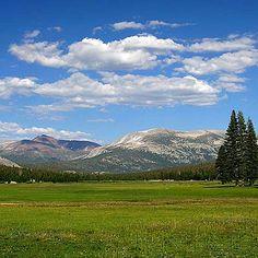 Tuolome Meadows - Yosemite  one of my favorite trails!  Gotta love California!
