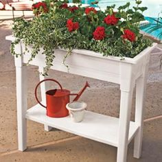 Elevated planter -- what a great idea and nice looking too! Comes in white or green.