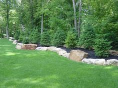 Berm Landscaping Ideas | berm with large boulders bordering and white pines planted.