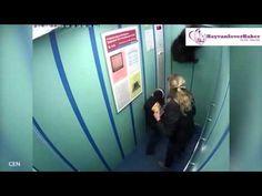 Köpek Asansör Kabininde Asılı Kaldı | Hayvan Sever Haber