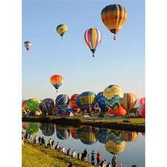 Image Search Results for hot air balloon festival