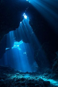 Beneath the midnight blue sea was a world of blue. Beams of blue moonlight penetrates the waves to illuminate the world beneath them. Deep Blue Sea, Ocean Deep, Red Sea, Dark Blue, Ocean Ocean, Ocean Rocks, Ocean Waves, Underwater World, Underwater Caves