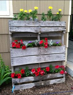 Pallet used as a planter. Burlap stapled inside to hold dirt/flowers