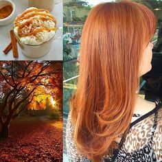 That dimensional #PumpkinSpiceHair though. 😍🎃🌰🍂 Can you believe Laura isn't a natural redhead? I love coppers! 🏵 This is one of my fave mix of highs, lows & base color thanks to @scrupleshair. ☕️ Thanks Laura as always! 💛 #lyssdidmyhair #autumnhair #redhead #gingerhair #copperhair #scruples