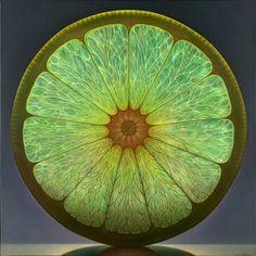 Luminous Portraits of Sliced Fruit Glow Like Stained Glass Windows