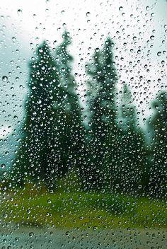 Rainy Day | Photographer (aitramah on tumblr)