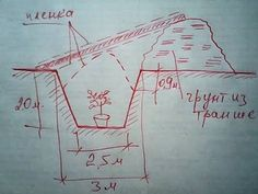 ТЕПЛИЦА-ТЕРМОС. Один из самых лучших, рациональных приемов в возведении капитальных теплиц — подземная теплица-термос.