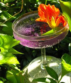 A Violet Crush    Serves 1    3 ounces finely crushed ice    4 ounces chilled dry white wine, or chilled dry, white proseco    1 ounce creme de violette (violet liqueur)    edible flowers, such as violet, borage or nasturtium and/ or a sprig of pineapple sage, suggested garnish    squeeze of Meyer lemon or sweet lime, optional    For a stiffer variation, add a shot of Grey Goose vodka or for more flair Grey Goose Poire