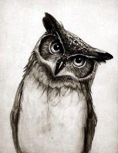 Bird drawing tattoo owl art 21 ideas for 2019 Draw Realistic, Realistic Owl Tattoo, Realistic Animal Drawings, Owl Tattoo Drawings, Pencil Drawings Of Animals, Animal Sketches, Bird Drawings, Drawing Sketches, Tattoo Owl