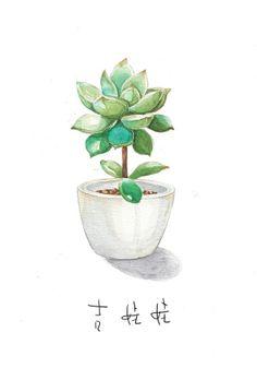 GALO 的插画 水彩植物一小波肉肉
