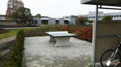 Pingpongtafel Groen bij Bronkhorst High-Tech B.V. in Ruurlo