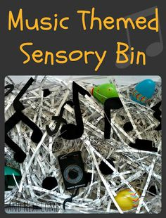Music Themed Sensory Bin from And Next Comes L