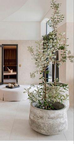 Home Interior Design, Interior And Exterior, Interior Decorating, My Dream Home, Home Decor Inspiration, Indoor Plants, Sweet Home, New Homes, House Design