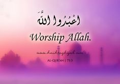 Islamic Daily: Worship