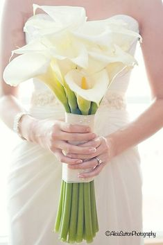 Hottest 7 Spring Wedding Flowers to Rock Your Big Day--elegant white Calla Lily wedding bouquets, spring wedding ideas Hand Bouquet Wedding, White Wedding Bouquets, Purple Wedding Flowers, Bridesmaid Flowers, Bridal Flowers, Wedding Blue, Trendy Wedding, Bridesmaid Ideas, Wedding Ideas