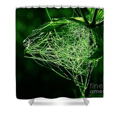 Morning Dew In The Green Shower Curtain by Sverre Andreas Fekjan. This shower curtain is made from polyester fabric and includes 12 holes at the top of the curtain for simple hanging. The total dimensions of the shower curtain are wide x tall. Green Shower Curtains, Morning Dew, Great Artists, Tapestry, Art Prints, Simple, Fabric, Top, Design