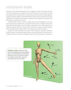 Anatomy_arm_balances_inversions_Page_178.jpg (408×516)
