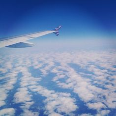 Thanks for the sweet pic onboard one of our flights, @sivlam! #PhotosFromTheWing