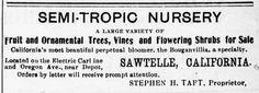 TAFT Nursery year of 1901, First Nursery of Sawtelle located near the Sawtelle Depot, on north side of Santa Monica Blvd.(Oregon Ave.) between Sawtelle Blvd. and Corinth avenue.