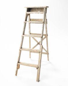 5 Foot Ren Ladder
