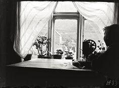 """At the window,"" Stongfjorden, Norway, ca. 1910, by Paul Stang, via Fylkesarkivet i (County Archives of) Sogn og Fjordane Commons on flickr."
