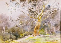 My great-grandmother, Emma Minnie Boyd, painted countless beautiful watercolour pictures of the Australian bush. She also painted a frieze of the four seasons which was mounted on the walls of her house in Yarra Glen in Victoria. Sadly, the house was burned to the ground in the bushfires of 2009.