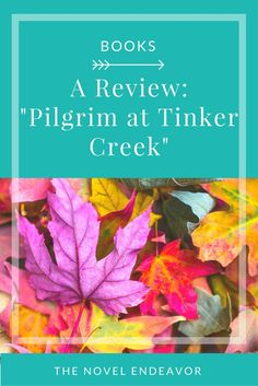 "While exploring nature and the depths of creation, Dillard created a masterpiece in ""Pilgrim at Tinker Creek."" Here are my thoughts on this Pulitzer winner! - The Novel Endeavor"