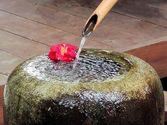 Urban Summer Detox at Ona Spa » Organic Spa Blog