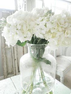 Alabaster Rose Lifestyle