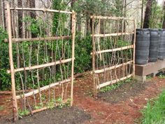 Trellis idea. I could use this for a little privacy from my neighbors. I could make these!! And gets some vines that could cover them all up.